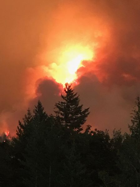 COURTESY PHOTO: PF&R - Flames from the Eagle Creek Fire rose above treetops as firefighters battled to contain the blaze.