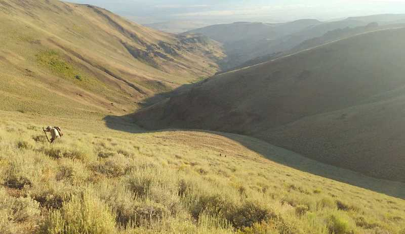 PHOTO COURTESY OF MATTHEW KLINE - The hike out of Indian Creek Canyon following the successful hunt. Kline and Rourk-Phillips are two tiny specks in the center of the photo.