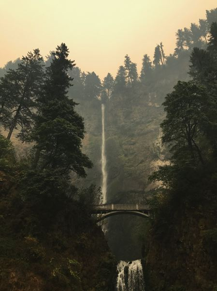 COURTESY PHOTO: REBECCA STAVENJORD/MULTNOMAH COUNTY - The terrain surrounding Multnomah Falls, the second-tallest waterfall in the United States, shows signs of fire damage, but green trees remain after an all-out battle against the Eagle Creek Fire.
