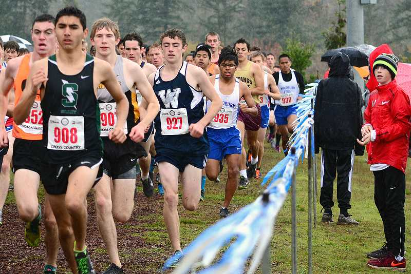COREY BUCHANAN - Senior Nicholas Whitaker will be one of the leading runners for the Wilsonville cross country team this year. The Wildcats seek league titles for both cross country teams.