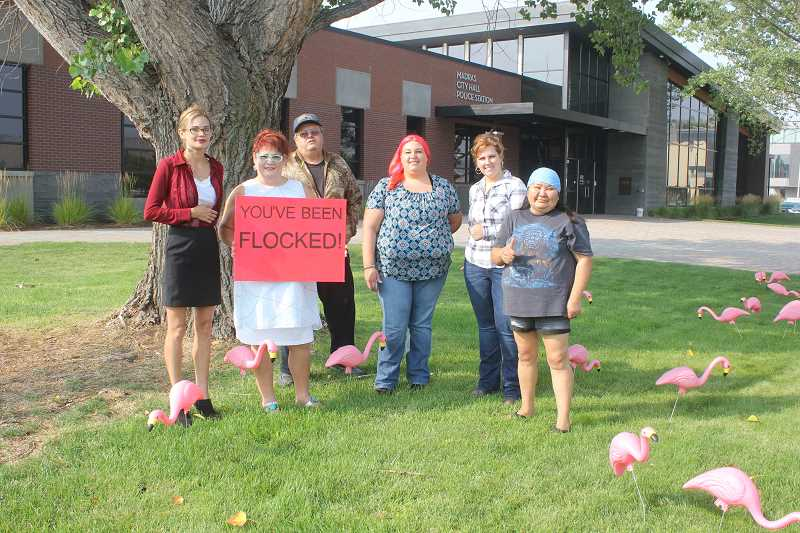 SUSAN MATHENY/MADRAS PIONEER - Kholeen's Kloset helpers, from left, Amanda, Kristy, Richard, Ashley, city of Madras Human Resources and Administrative Manager Sara Puddy, and Missy covered the lawn in front of city hall with pink flamingos last week to start the fundraising campaign.