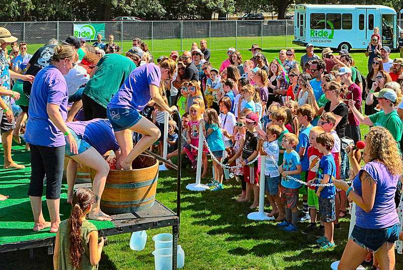 DAVID F. ASHTON - A highlight for many at the Portland Picnic was the Grape Stomping Contest. Thats how wine is made, people!