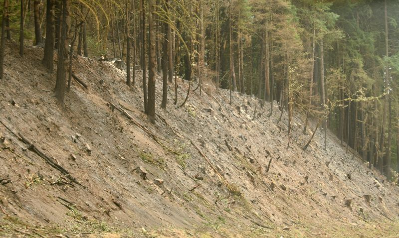 OUTLOOK PHOTO: JOSH KULLA - Trees have been removed from this denuded landscape on the east side of Interstate 84.