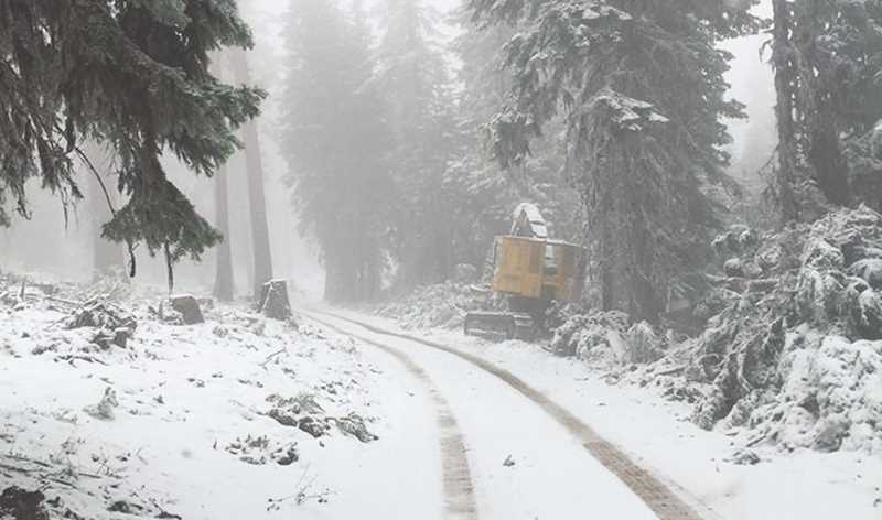 PHOTO BY OCHOCO NATIONAL FOREST - Snow was a welcome sight on the Desolation fire containment lines on Tuesday morning.