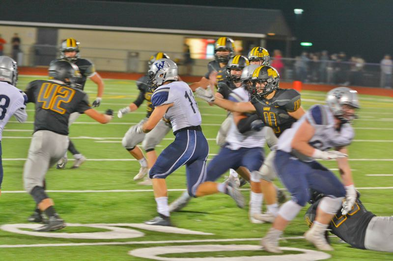 SPOTLIGHT PHOTO: JAKE MCNEAL - Junior tight end Jacob Klein (42), senior linebacker Dylan Kessinger (4) and the Lions can banish Hillsboro to its first 0-5 overall start since it went winless in Class 6A in 2011 and 2012.
