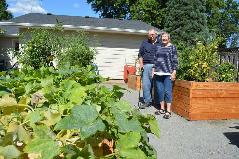 NEWS-TIMES/HILLSBORO TRIBUNE PHOTO: KATHY FULLER - Harold and Judy Berger had raised garden beds built in their yard to make it easier to tend their garden without bending so far.
