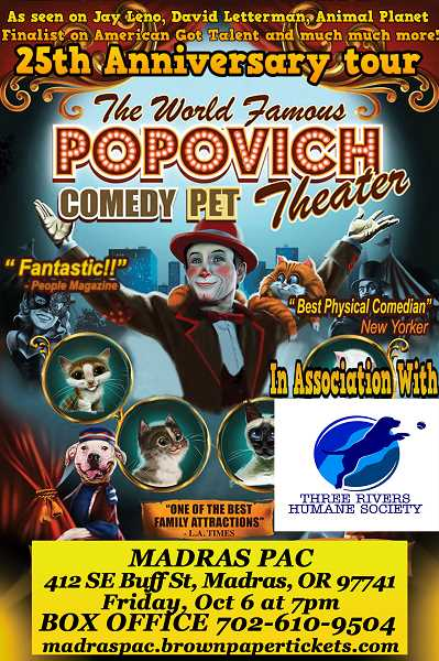 SUBMITTED PHOTO - The comedy pet theater will perform locally.