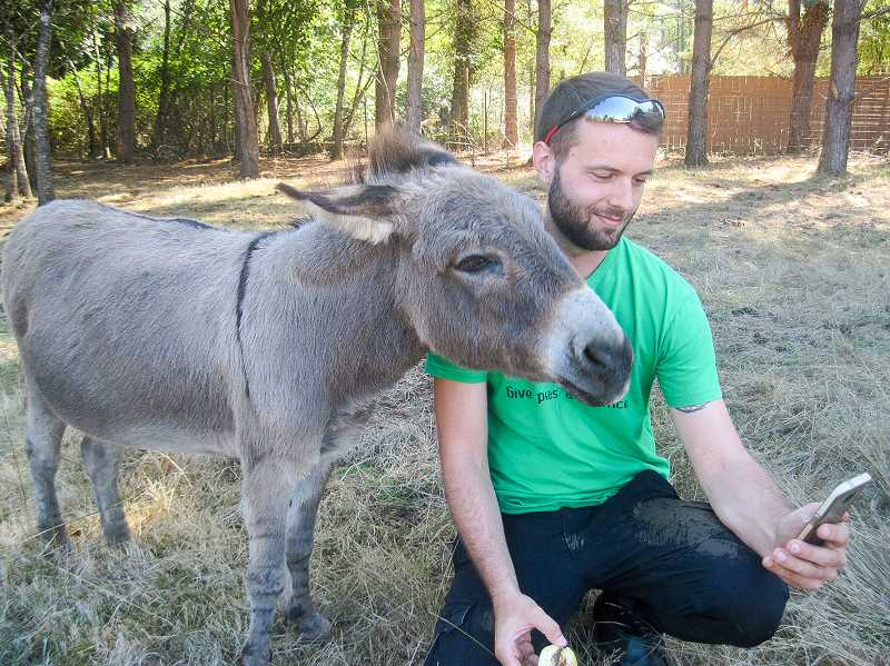 CONTRIBUTED PHOTO - A cider squeeze participant takes a photo with a donkey at Out to Pasture on Sunday, Sept. 24.