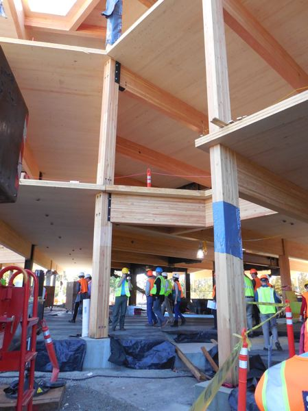 PAMPLIN MEDIA GROUP: JOSEPH GALLIVAN  - The First Tech Federal Credit Union site in Hillsboro uses mostly mass timber.