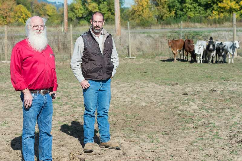 NEWS-TIMES PHOTO: CHRISTOPHER OERTELL - Tom Epler Sr. and his son Tom Jr. stand in a pasture that holds miniature zebus at their ranch near Forest Grove. The family is selling off its buffalo herd, which has thrived at the intersection of B Street and Highway 47 for more than two decades.