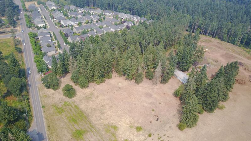 TIMES PHOTO: ALVARO FONTAN - Tualatin and Wilsonville haven't been able to agree on what to do with this area of land south of the Victoria Gardens subdivision. It's time for a third party to tell them.