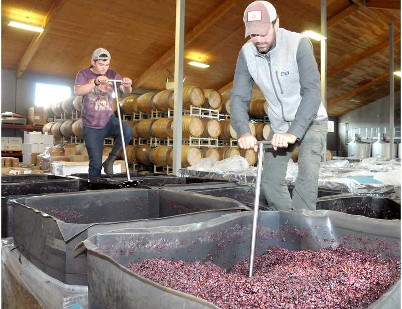 GARY ALLEN - Workers do a 'punch down' on pinot grapes at ROCO Winery on Friday.