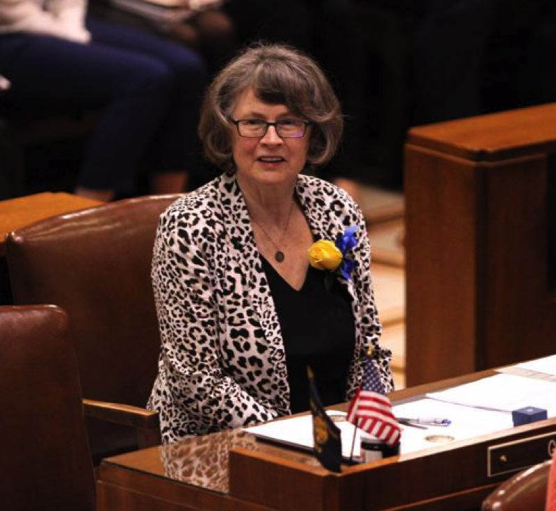 FILE PHOTO - Sen. Ginny Burdick, on the Senate floor in early 2017.