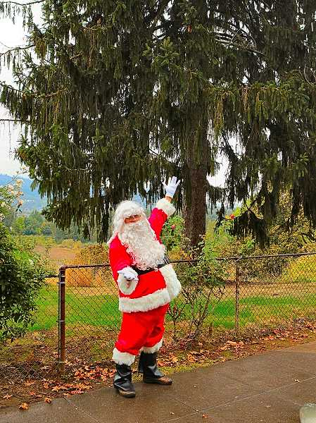 DAVID F. ASHTON - Santa Claus, standing by the Sellwood-Westmoreland Christmas Tree on the Oaks Bottom Bluff, says hes hopeful new strings of LED lights will decorate it this Holiday Season.