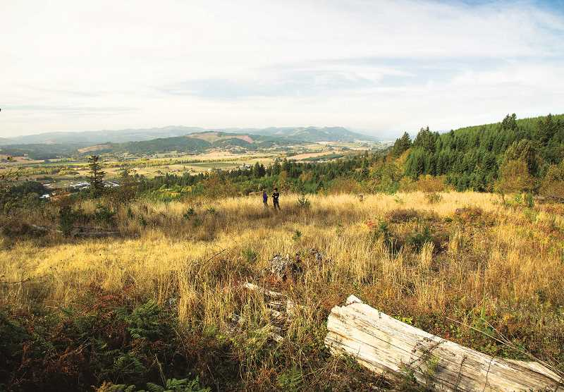 FOREST GROVE NEWS TIMES PHOTO - The land where Chehalem Ridge Nature Park sits was formerly owned by Stimson Lumber Company.