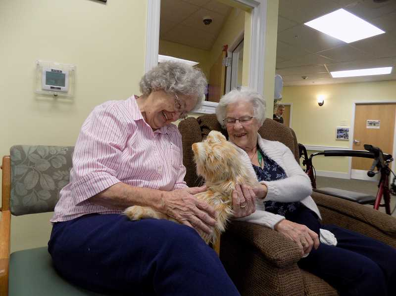 GAZETTE PHOTO: RAY PITZ - Ilene Holloway, left, and  Betty Chambers interact with Cuddles, a robotic cat made by Hasbro. Sherwood resident Julie Nader has  been bringing the realistic-looking animal to local memory care centers for almost a year.