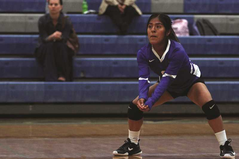 PHIL HAWKINS - Jennifer Martinez, Honorable Mention defensive specialist
