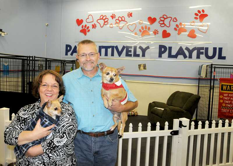 GARY ALLEN - Richard and Merissa Atwood launched Pawsitively Playful in October, a new doggie daycare and boarding house in Newberg.
