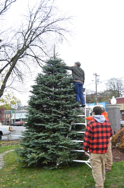 SPOTLIGHT PHOTO: COURTNEY VAUGHN - A Christmas tree goes up in the Columbia County Courthouse Plaza.
