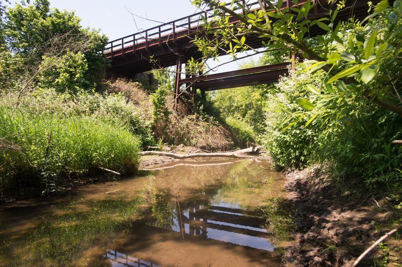FILE PHOTO: THE OUTLOOK - Union Pacific Railroad tracks cross this tresle at Fairview Creek. A beaver dam had been located below this tresle for several years. And a nearby property owner raises this question: Did beavers undermine the embankment and weaken the bridge?
