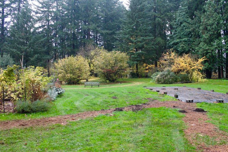 PORTLAND TRIBUNE: LYNDSEY HEWITT - Leach Botanical Garden provides a peaceful rustic setting amid thousands of plant species, not far from Southeast Foster Road  and 122nd Avenue in East Portland.