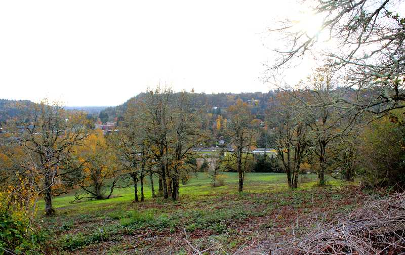 TIDINGS FILE PHOTO - The development agreement proposed by Tannler Properties — which would guarantee several infrastructure improvements if a proposed development were to be approved — has not been seen before in West Linn.