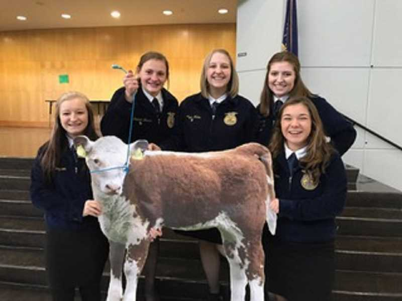 SUBMITTED PHOTO - Canby's A-Team placed 5th at the state veterinary contest Nov. 18 is comprised of (from left to right) May Wood, Amanda Moses, Megan Walton, Olivia Palacias and Kate Peters.