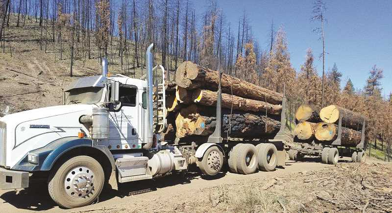 PHOTO COURTESY OF OCHOCO NATIONAL FOREST - The new Accomplishment Report highlights a variety of activities the Ochoco National Forest and Crooked River National Grassland have been involved in during the past few years, including timber harvests in the forest.