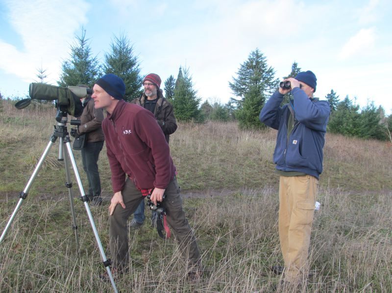 PHOTO BY ELLEN SPITALERI - Mark Eaton looks at a bald eagle through a scope during the recent Christmas Bird Count.