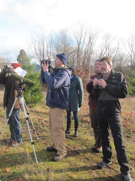 PHOTO BY ELLEN SPITALERI - Ron Myers, in red hat, group leader Dan Strong and Mark Fitzsimons check out a kestrel in the area behind La Salle Prep.