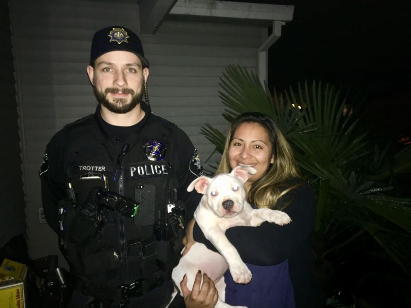 COURTESY OF THE WASHINGTON COUNTY SHERIFF'S OFFICE - This puppy was one of two reported stolen Wednesday who was found and returned to the owners Thursday evening.
