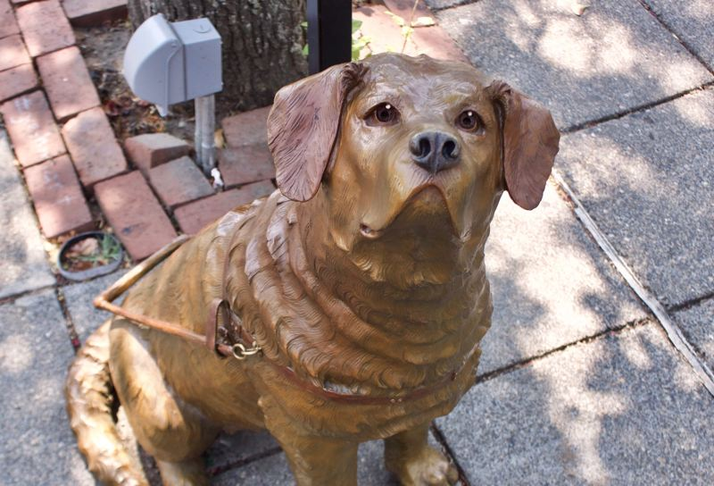 OUTLOOK FILE PHOTO - Driscoll, a bronze statue that honors Greshams connection to Guide Dogs for the Blind, has become a popular stop for those walking along North Main Avenue.
