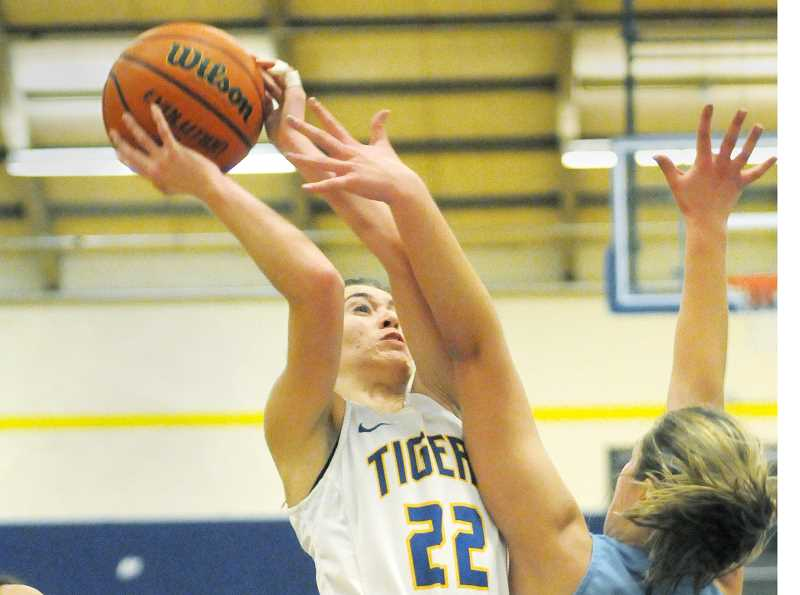 SETH GORDON - Sophomore forward Karly Fouche rises for a shot during Newberg's 49-40 home loss to Lakeridge Friday night.