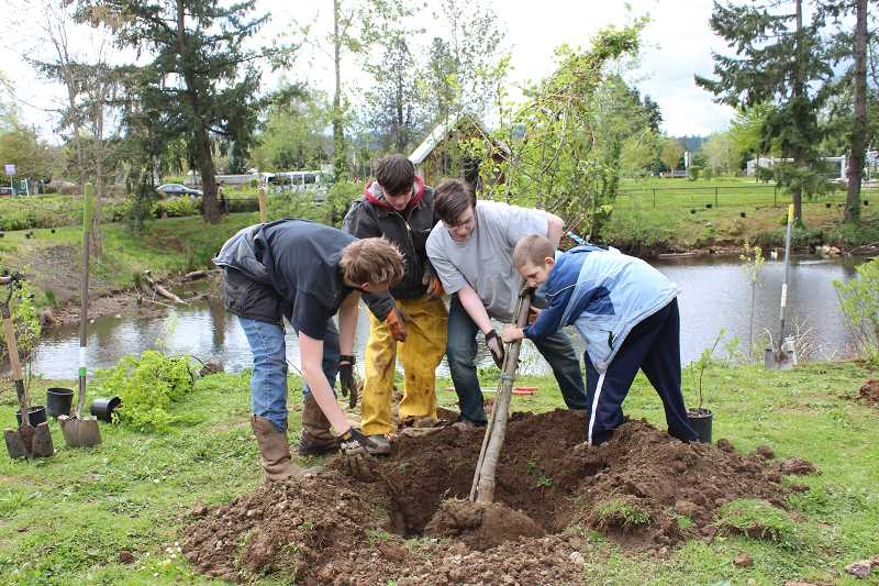 CONTRIBUTED PHOTO: CLACKAMAS RIVER BASIN COUNCIL - Estacada residents work together during a previous Clackamas River Basin Council planting event in Estacada. The group will host another work party next month.