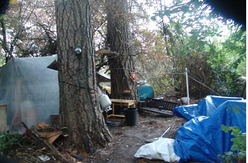 COURTESY TIGARD POLICE DEPARTMENT - A third party hired by a private property owner removed the shelters, junk and debris that accumulated inside a homeless camp along Tigard Street.