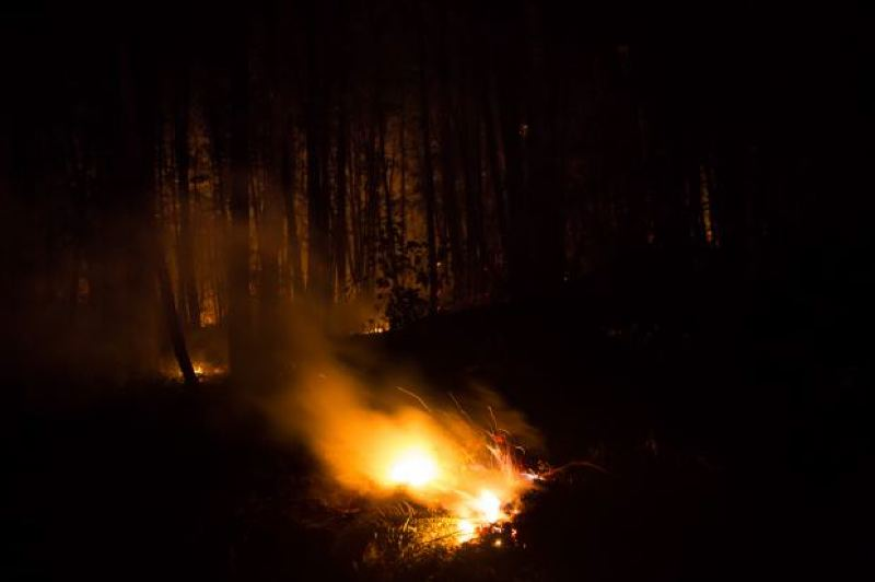 COURTESY PHOTO - Fire crews worked to tackle the Eagle Creek blaze.