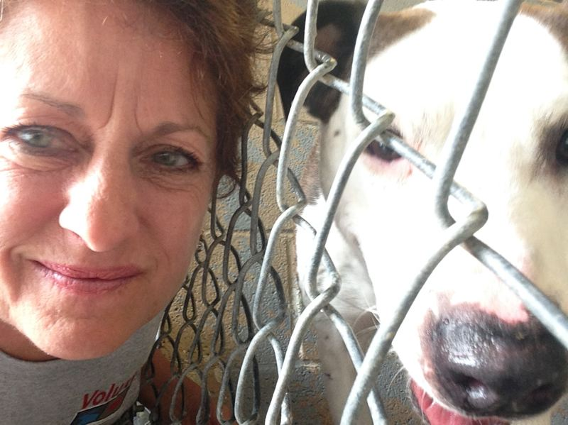 FILE PHOTO COURTESY OF DEBBIE CRAVATTA - Debbie Cravatta, shown here in 2015 with Duke, filed a civil lawsuit against Columbia County after the dog was euthanized despite her ongoing attempts to adopt the dog. A jury ruled against Cravatta last month.