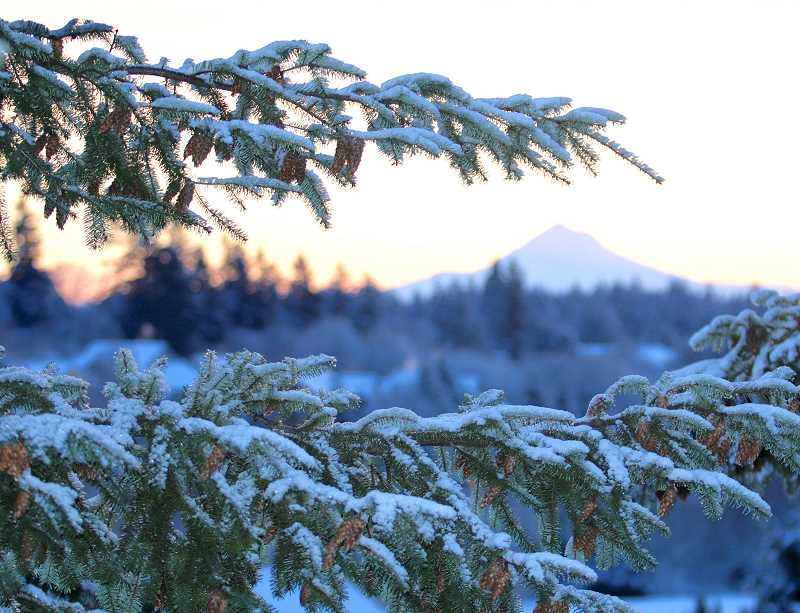 TIDINGS PHOTO: BRIAN MONIHAN - West Linn residents were greeted with a clear view of Mt. Hood Wednesday morning and about an inch of snow.