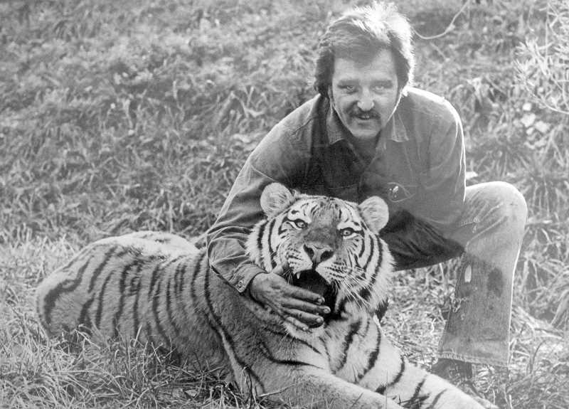 PHOTO COURTESY OF LYNN TROUPE - Lynn Troupe is photographed with one of the tigers he worked with on the set of 'Roar,' a movie that starred Tippi Hedren.