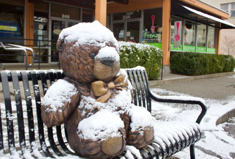 OUTLOOK PHOTO: CHRISTOPHER KEIZUR - Even the bronze teddy bear in downtown Gresham was comfy under a blanket of snow.