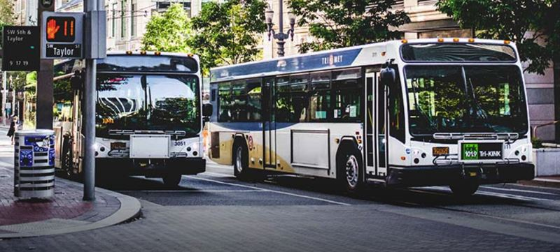 COURTESY TRIMET - TriMet buses in downtown Portland.