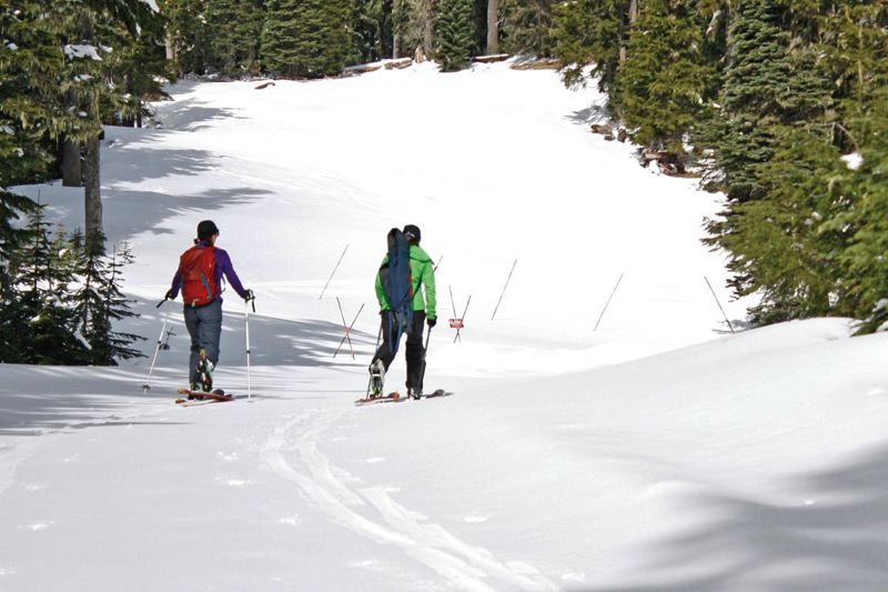PAMPLIN MEDIA GROUP FILE PHOTO - U.S. Department of Agriculture employees snowshoed on Mount Hood in the past to check snowpack. A new study found that in the past century the West's snowpack has declined significantly.