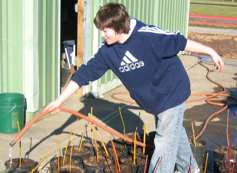 SUBMITTED PHOTO - CREST program is hosting a native plant sale March 10 in Wilsonville.