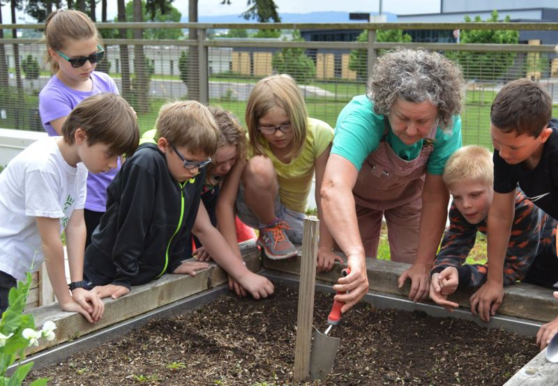 FILE PHOTO - Students led by garden volunteer Gail Christensen, center, prepare to plant onions in a raised garden bed at Otto Petersen Elementary School in Scappoose.
