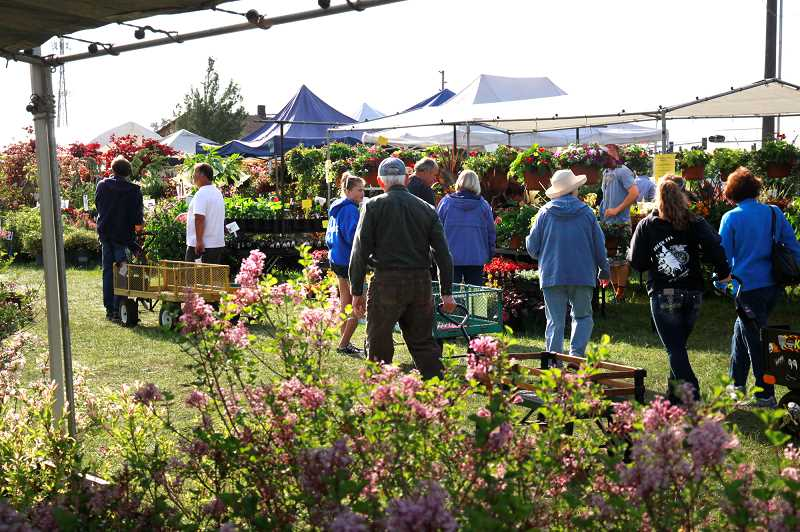 SUBMITTED PHOTO - Clackamas County Master Gardeners Spring Garden Fair returns May 5 at the Clackmas County Event Center in Canby.