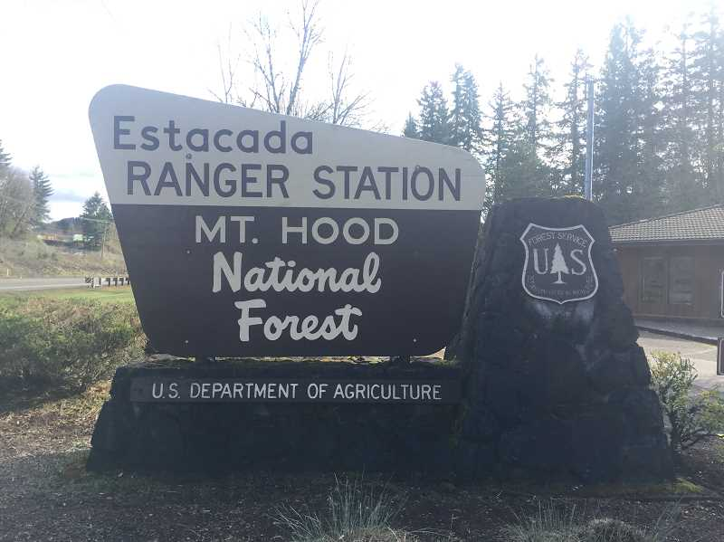 ESTACADA NEWS PHOTO: EMILY LINDSTRAND - A recent study found that  visits to the Mount Hood National Forest generate around $94 million in spending each year in the communities surrounding the forest, such as Estacada.