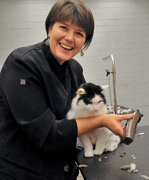 STAFF PHOTOS: VERN UYETAKE  - Michell Evans, owner of Canine Perfection, recently was certified as a Master Cat Groomer.