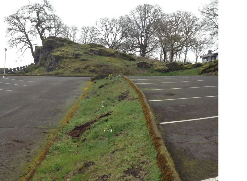PHOTO COURTESY: KRISTIN BROWN - Oregon City Parks Department staff work to prep the planting areas for the April 7 Arbor Day event on the McLoughlin Promenade.