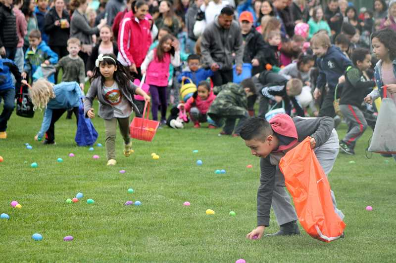 SPOKESMAN PHOTOS: LESLIE PUGMIRE HOLE - The melee begins Saturday, March 31, as the Wilsonville Parks and Recreation-hosted Easter egg hunt begins at Memorial Park.  See more photos on page 2.