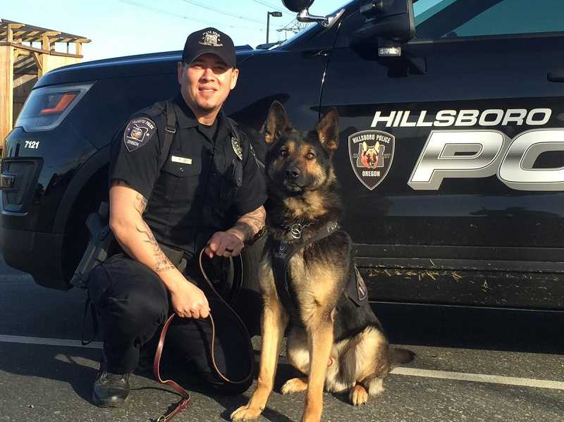 COURTESY PHOTO - Timber and officer Mike Lee worked together for two years with the Hillsboro Police Department before Timber retired earlier this year.
